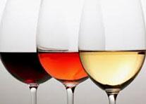 Connaissance du Vin